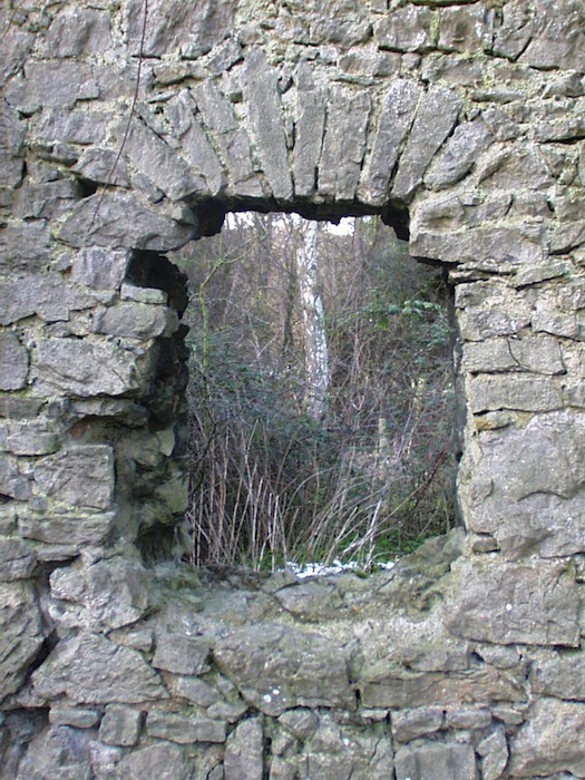 Siamber Wen window